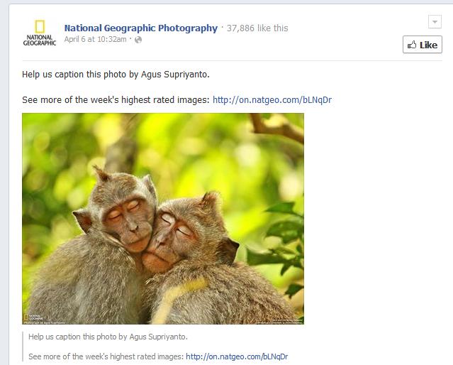 fb-caption